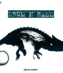 Various Artists – Drum'n'Bass (2xCD) ZYX Records Germany (1997)